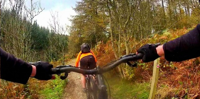 Wales, Trails and Gales